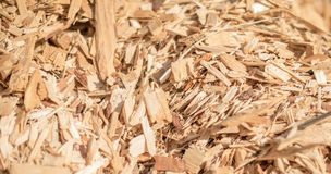 Technological wood chips. Selective focus Stock Image