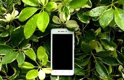 Technologie in der Natur Lizenzfreies Stockbild