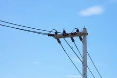 Technologie: elektrischer Beitrag durch die Straße Lizenzfreies Stockbild