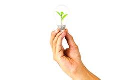 Technologie en het milieu Stock Fotografie