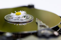 Technologie verte Photographie stock
