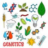 Technologies génétiques dans des croquis d'agriculture Images libres de droits
