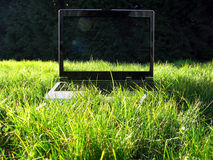 When technologies go green. White and black mobile computer on green grass with daisies, forest trees on background, summer sunny day, daylight, focus on Stock Photography