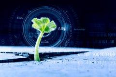 Technologies modernes pendant la nouvelle vie Image stock