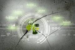 Technologies modernes pendant la nouvelle vie Photo libre de droits