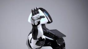 Technologies robotiques modernes Robot moderne blanc dans un studio lumineux Android ondulant une main de salutation, salue le té banque de vidéos