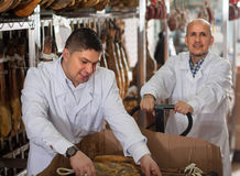 Technologists in white gown checking joints of iberico jamon at. Butchery male technologists in white gown checking joints of iberico jamon at factory Royalty Free Stock Photos
