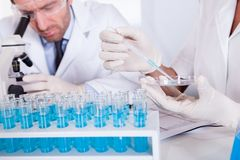 Technologists at work in a laboratory stock photo
