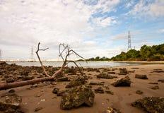 Technology. Power plant on the beach Stock Photos