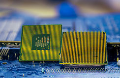 Technology background with computer processors CPU concept blue circuit board texture Royalty Free Stock Photo