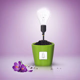 Technology destroy the environment. Ecology concept - light bulb with bad life Stock Photo