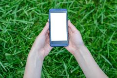 Technology and nature. Hands holding mobile phone with white blank screen over background of grass cell cellphone smart smartphone. Mobile telephone screen pla stock images