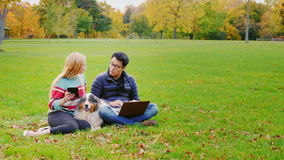 Technology on vacation. Man with laptop, woman with a tablet. Near beloved Australian Shepherd. Copyspace compisition stock video