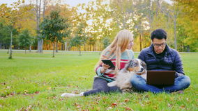 Technology on vacation. Man with laptop, woman with a tablet. Near beloved Australian Shepherd. Friends relaxing on the lawn in the park. With them, the dog, the stock video footage