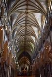 Techo de catedral de arcos saltados Imagen de archivo