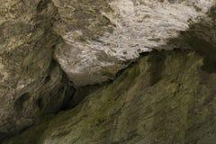 Techo de la cueva en el parque nacional Foto de archivo libre de regalías