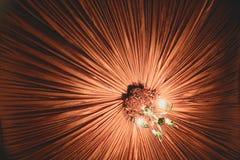 Techo y lámpara de la decoración Fotos de archivo libres de regalías