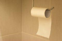 Tecido de banheiro Imagem de Stock