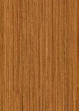 Teck di legno di struttura fotografie stock libere da diritti