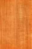 Teck (struttura di legno) Immagine Stock