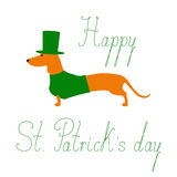Teckel de jour de St Patricks Photos libres de droits