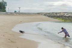 Teckel femelle effrayé fonctionnant de la mer photographie stock libre de droits