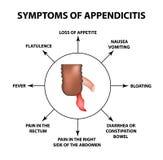 Tecken av appendicit Inflammation av bilagan Infographics Vektorillustration på isolerad bakgrund vektor illustrationer