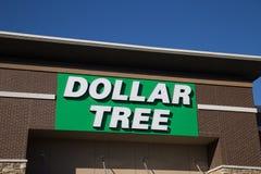 Tecken för dollarträdlager Royaltyfria Bilder