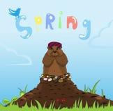 Tecken för färg för tecknad film för Groundhog dag av murmeldjuret efter en vinterdvala vektor illustrationer