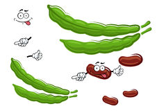 Tecken för grönsak för nya bönor för tecknad film Royaltyfria Foton