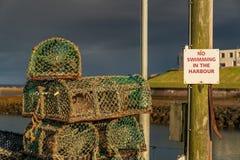 Tecken: Ingen simning i hamnen - och några fiskfällor royaltyfri fotografi