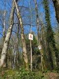 Tecken med bilder av fåglar på träd i skogen Royaltyfria Foton