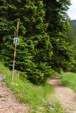 Teckenpunkter till en fotvandra slinga i skogen i sommar arkivbilder