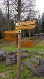 Teckenstolpe i den bayerska skogen (Tyskland) Arkivbild