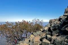 Teckenstolpen på treken av La Campana National parkerar i centrala Chile, Sydamerika royaltyfri fotografi