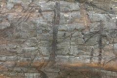 teckent trä Arkivbild