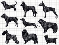 teckna för hundar Arkivbilder