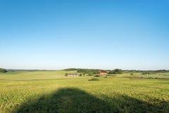 tecknad film fields grön illustrationstil Royaltyfri Foto