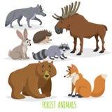 Tecknad film Forest Animals Set Varg, igelkott, älg, hare, tvättbjörn, björn och räv Rolig komisk varelsesamling Royaltyfri Foto