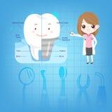 Tecknad film manipulerar med tanden Fotografering för Bildbyråer
