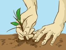 Tecknad film som planterar trädet Händer satte en grodd i jordningen Royaltyfria Bilder