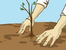 Tecknad film som planterar trädet Händer satte en planta i jordningen Arkivfoton