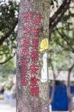Tecknad filmaffischer - bruket av kondomar Royaltyfri Fotografi