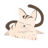 Tecknad filmappliqueuppsättning, avslappnande katt Arkivfoton