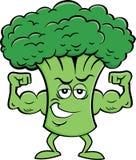 Tecknad filmbroccoli som böjer hans muskler royaltyfri foto