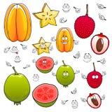 Tecknad filmcarambola, litchiplommon och äppleguavafrukter Arkivbild