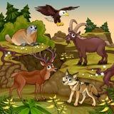 Tecknad filmdjur, hjortar, örn, groundhog, steinbock stock illustrationer