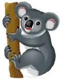 Tecknad filmdjur - koala Royaltyfri Fotografi