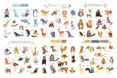 Tecknad filmdjur och fåglar av olika kontinenter royaltyfri illustrationer