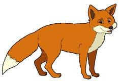 Tecknad filmdjur - räv - illustration för barnen Arkivfoto